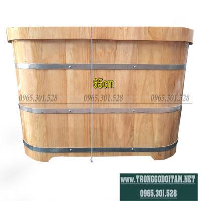 bồn tắm thuốc gỗ thông nhật