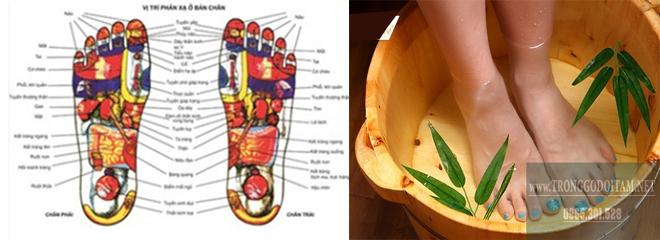 công dụng chậu gỗ ngâm chân